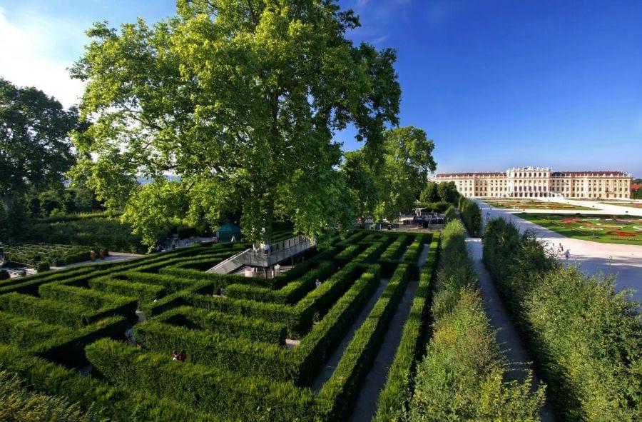 Schonbrunn Palace garden maze