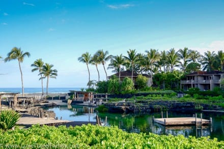 King's Pond Hualalai top travel experiences in 2015