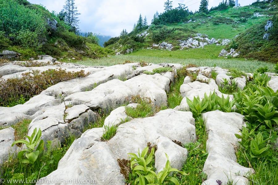 Limestone karst the Culinary hike in Bregenzerwald