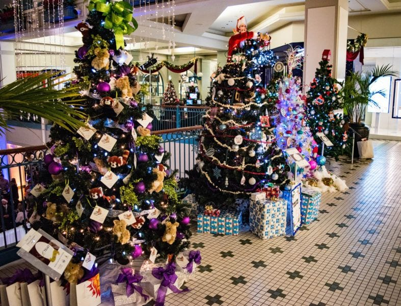 Festival of Trees things to do in Victoria BC at Christmas